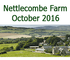 Nettlecombe Farm Retreat in October