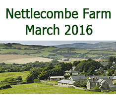Nettlecombe Farm Retreat in March